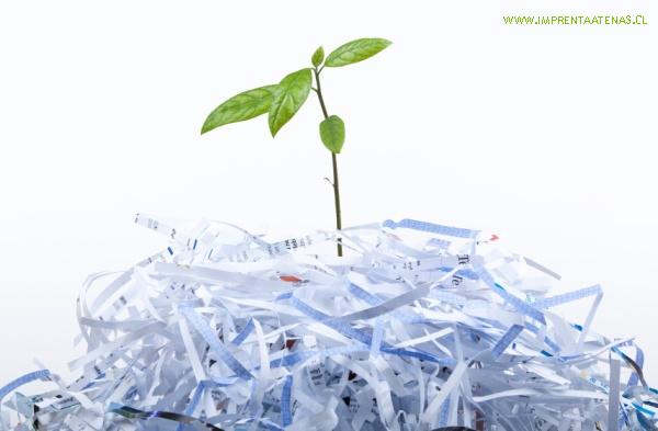 papel-reciclado-y-el-cuidado-del-medio-ambiente-600x393